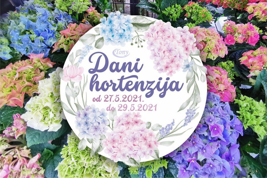 Dani hortenzija u Vrtnom centru Tony